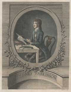 Engraved portrait of Sydney Parkinson