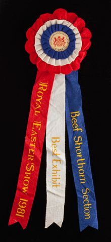 Red, white and blue rosette with three long felt ribbons extending from the base. Printed in yellow text is 'Royal Easter Show 1981, Best Exhibit, Beef Shorthorn Section'.