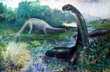 Illustration of dinosaurs and a waterway. One large four-legged dinosaur grazes at the water's edge. Several others are submerged in water. One in the foreground has its long neck extended well above the surface.