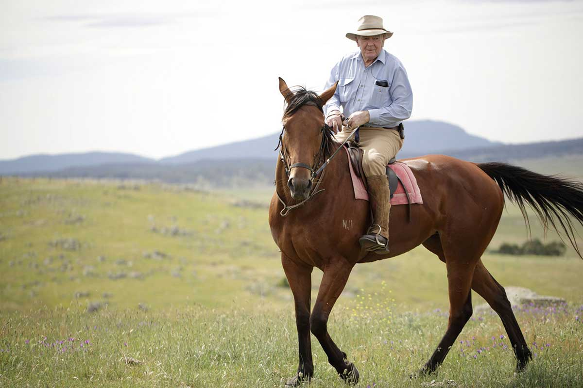 Neale Lavis riding Wattle Grove, December 2013.  - click to view larger image