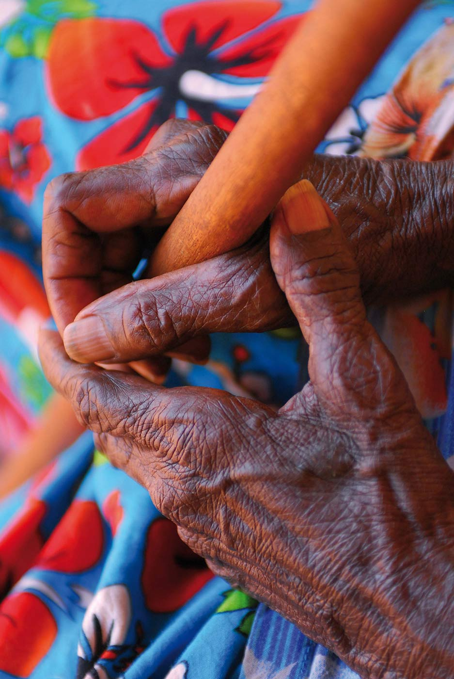 Colour photo of a pair of hands holding a stick. - click to view larger image