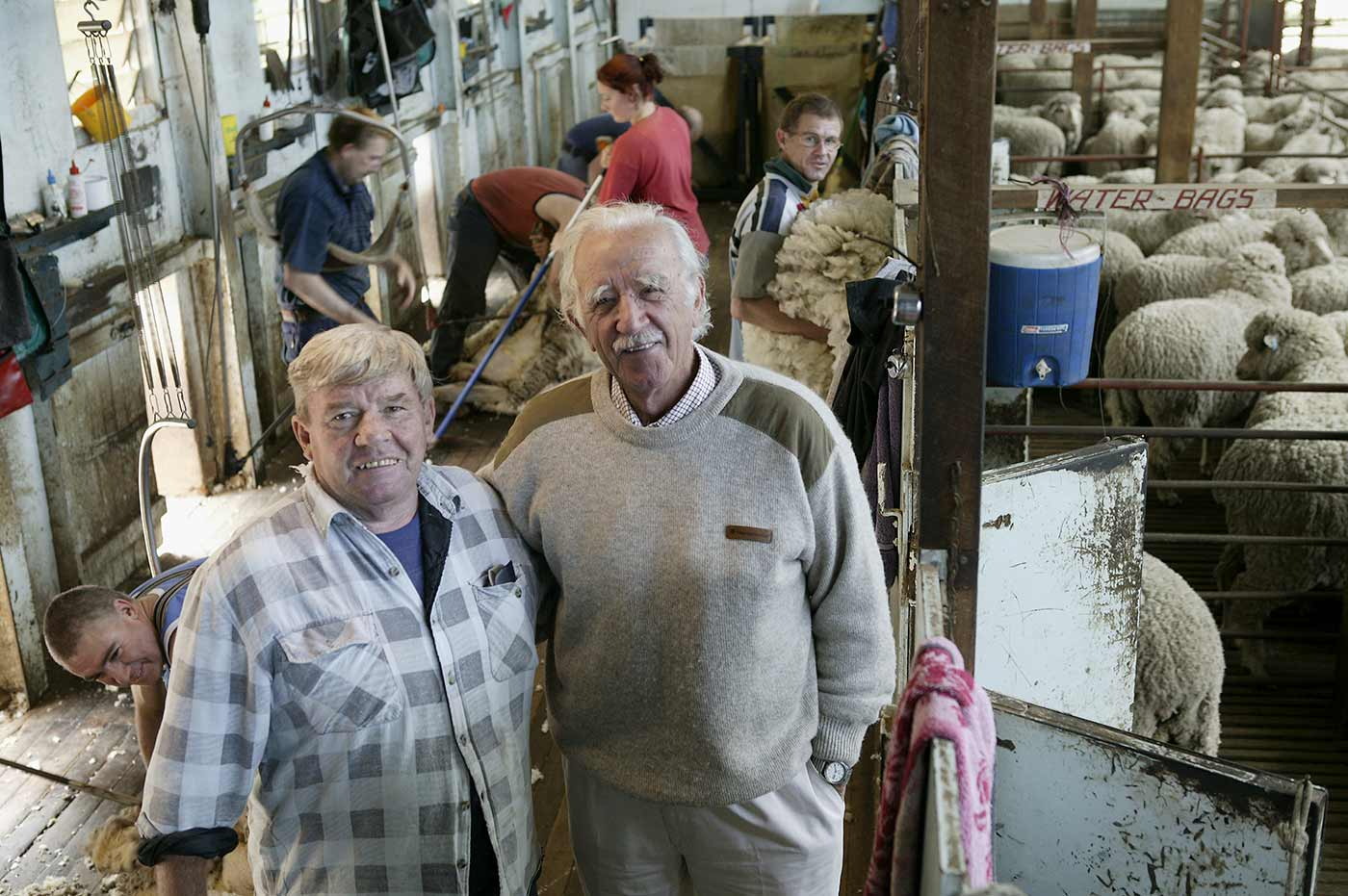 Jim Maple-Brown and local shearing contractor 'Bluey' Thompson posing together in a shearing shed. - click to view larger image