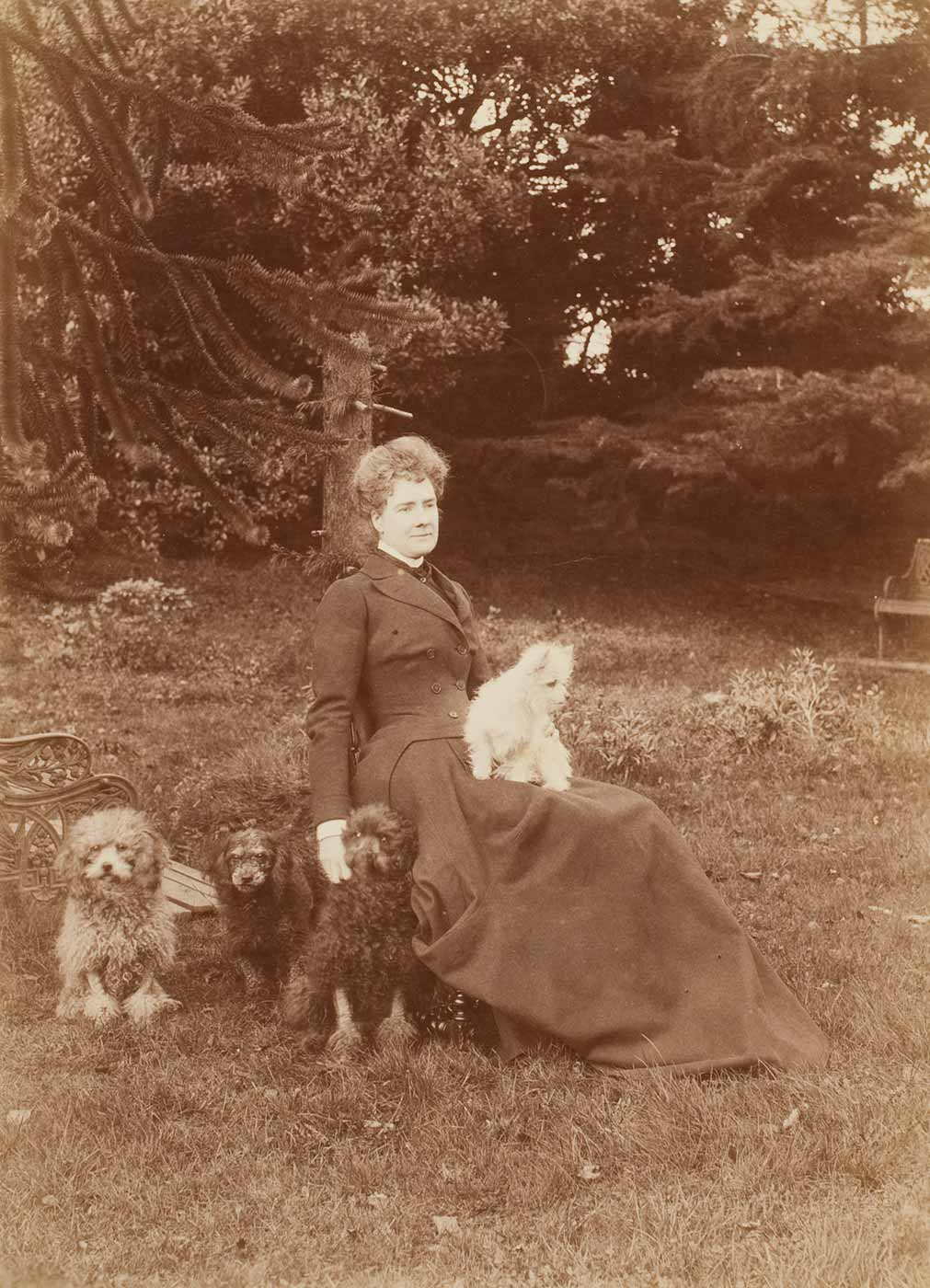 A woman and four dogs in a garden. - click to view larger image