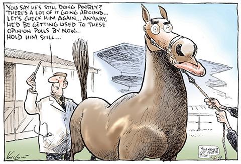 Horse Vet Cartoon a Cartoon of a Nervous Horse