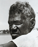 Bardayal Nadjamerrek
