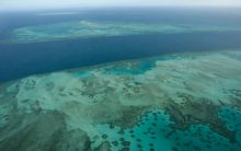 Reef near Mer (Murray Island), Torres Strait.