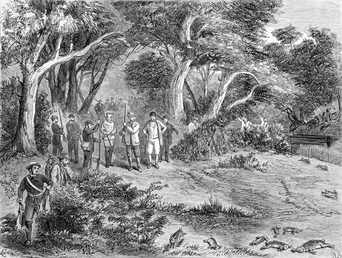 An engraving of hunters and dead rabbits