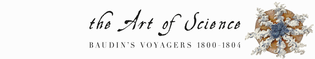 The Art of Science: Baudin's Voyagers 1800–1804