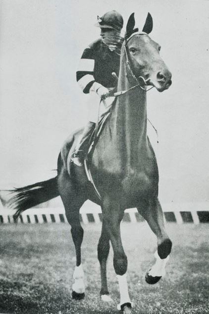 Black and white photo showing a jockey in racing silks riding a horse. - click to view larger image