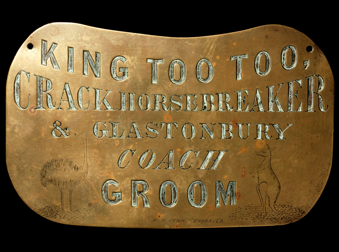 Aboriginal breastplate for King Too Too - click to view larger image