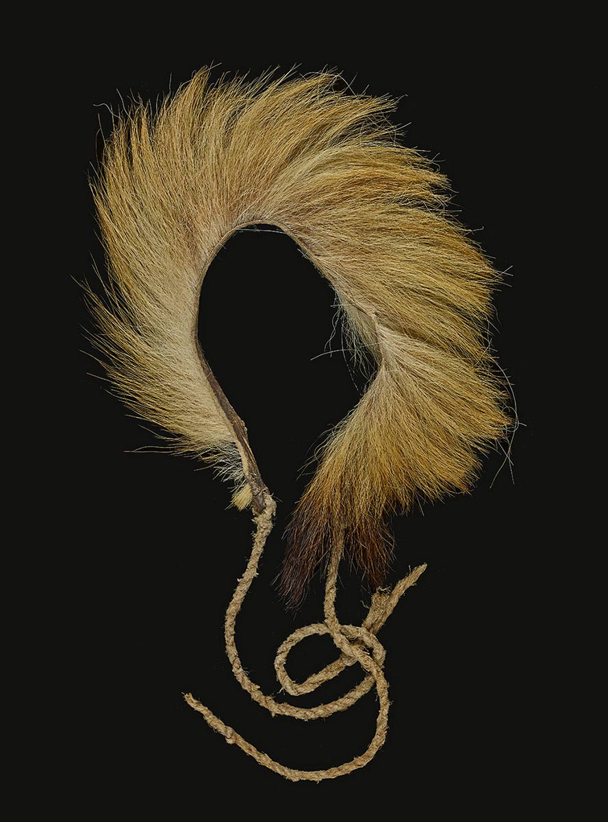 Headband made from a dingo tail and twine. - click to view larger image