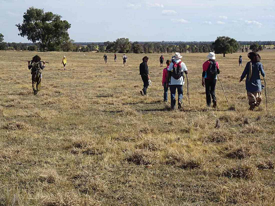 Walkers stretched out across flat grassy country