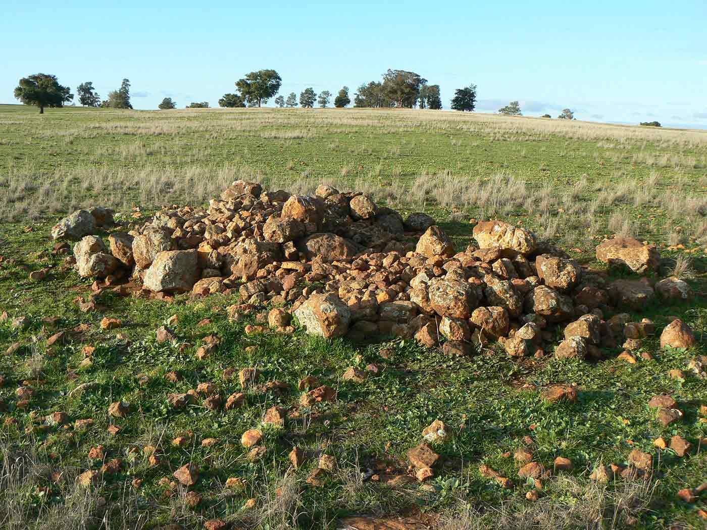 A pile of rocks in a grassy paddock.