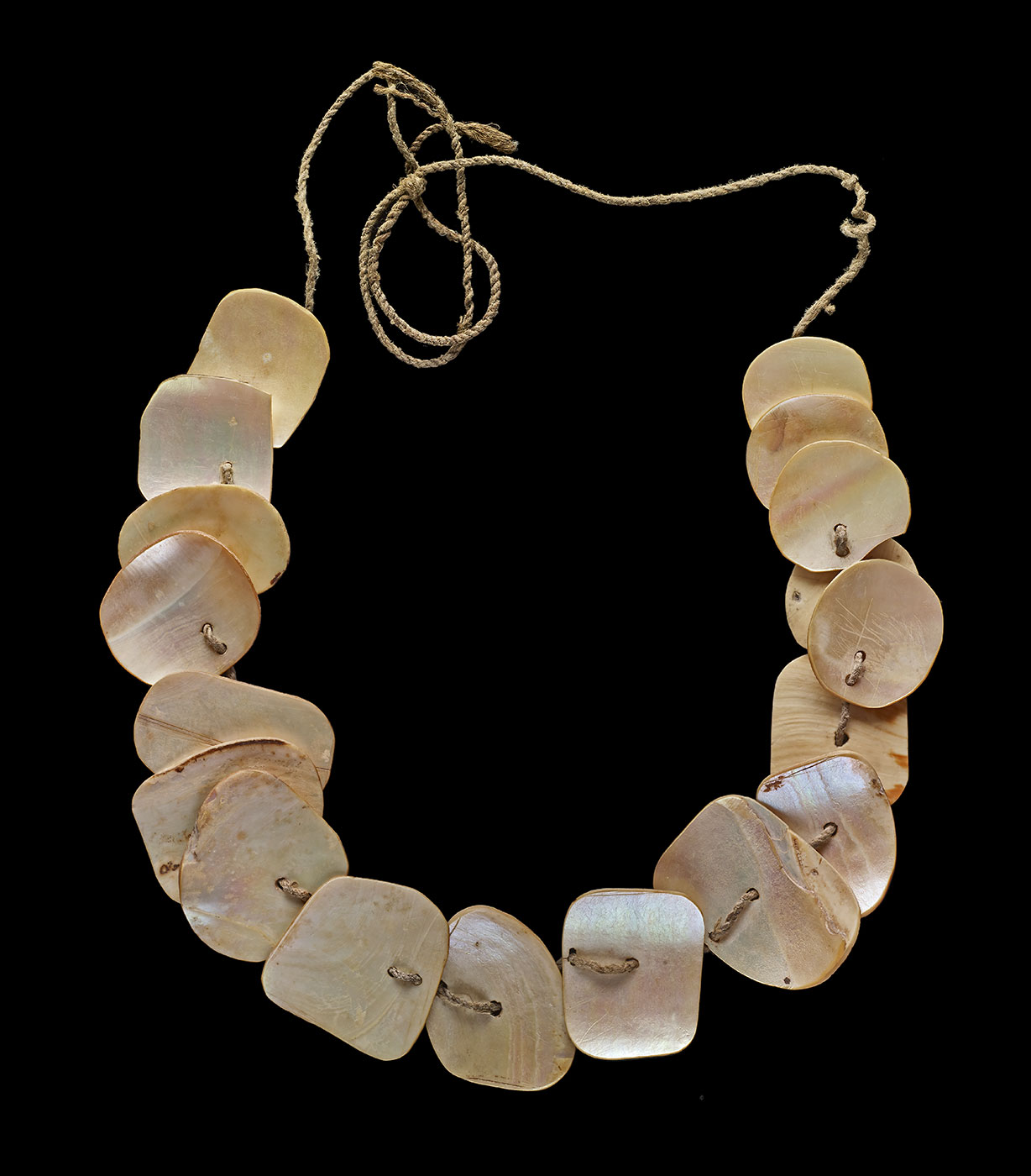 Necklace made from nautilus shell and natural fibre. - click to view larger image
