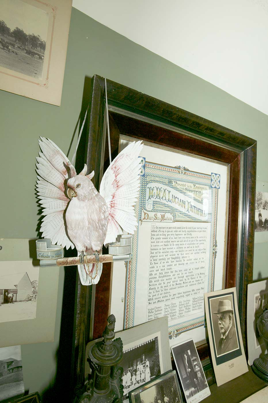 Photographs and documents on a wall and shelf. A paper sculpture of a cockatoo hangs from a framed document. - click to view larger image