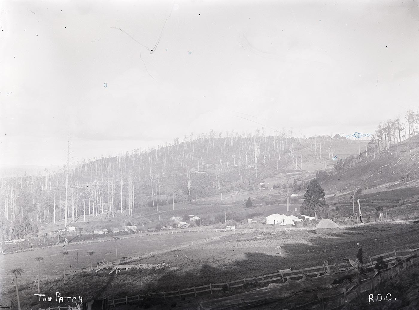 A photographic glass plate negative showing a house in the background of hills and trees. Two rows of wooden fences are in the foreground. Handwritten text on the bottom of the glass negative reads 'THE PATCH' and 'R.O.C.' on the right. - click to view larger image