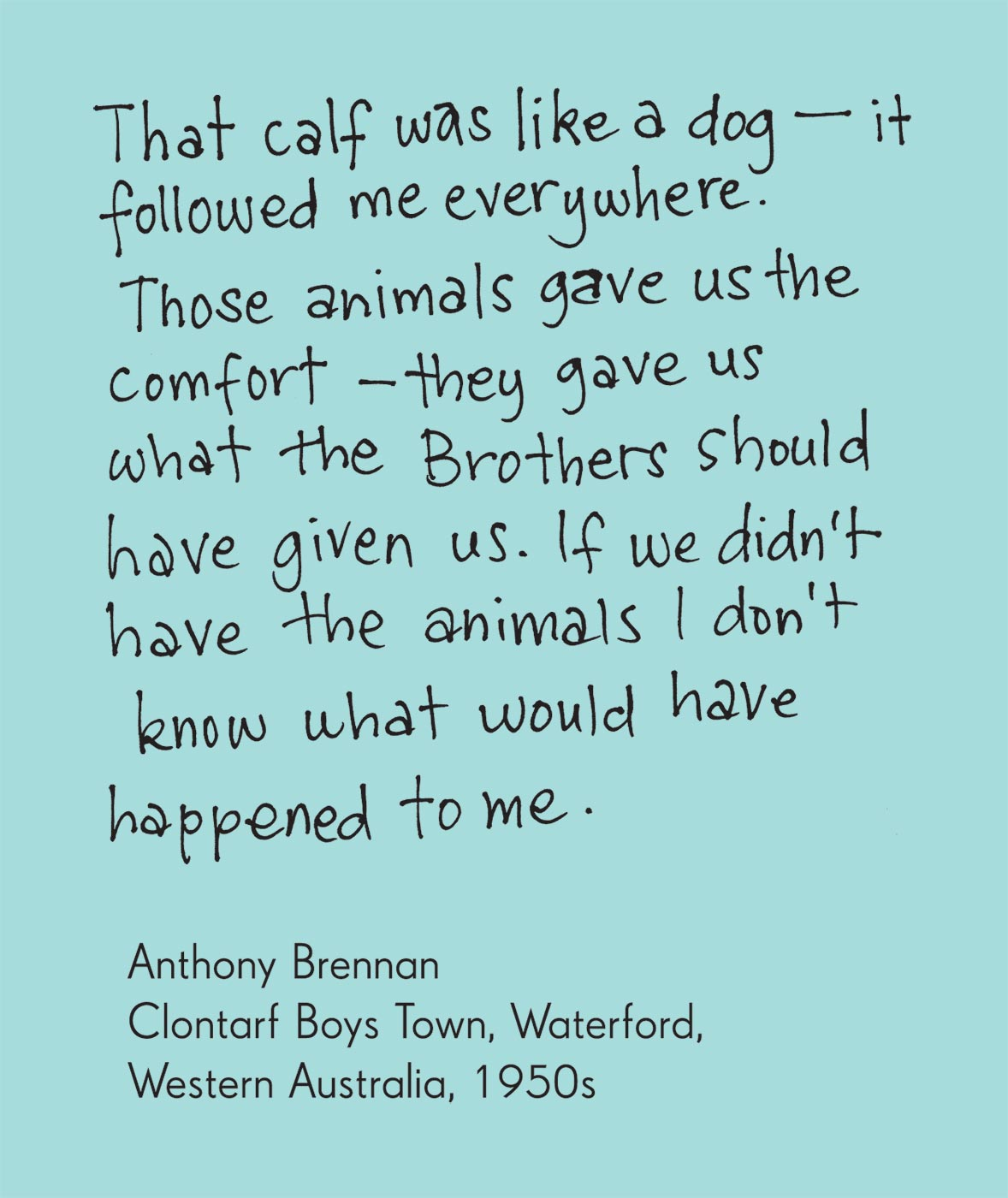 Exhibition graphic panel that reads: 'That calf was like a dog — it followed me everywhere. Those animals gave us the comfort — they gave us what the Brothers should have given us. If we didn't have the animals I don't know what would have happened to me', attributed to 'Anthony Brennan, Clontarf Boys Town, Waterford, Western Australia, 1950s'. - click to view larger image