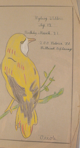 A child's drawing of a small yelllow bird, with grey and red highlights. The handwritten text at top reads 'Sydney Walters, Age 12, Birthday March 21, 200 Victoria St, Ballarat Orphanage'. - click to view larger image