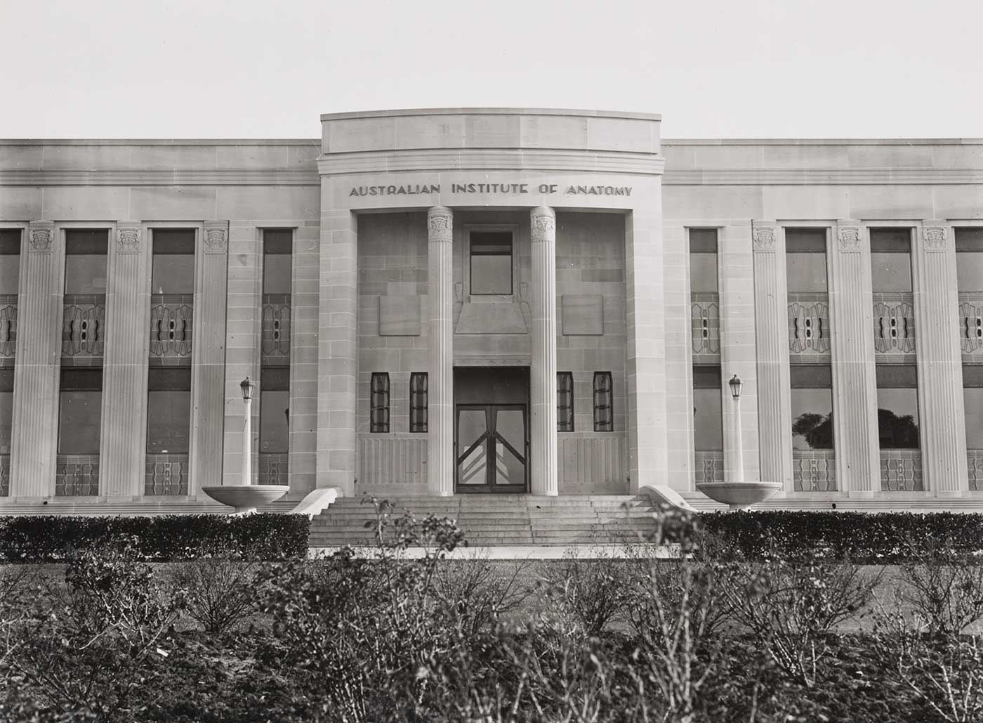 The Australian Institute of Anatomy building. The two storey building is seen from the front. Much of the imposing facade with its half-square columns and central entrance is visible. The columns have windows and designed panels between them. At the centre of the photograph are the main doors, whose dark timber is in contrast to the light tones of the sandstone facade. The doors are small in contrast to the two large columns in the round on either side of the entrance. None of the building's roof is visible as it has a flat roof which is hidden by the top of the facade. In the photograph foreground is a garden bed with some flower bushes.