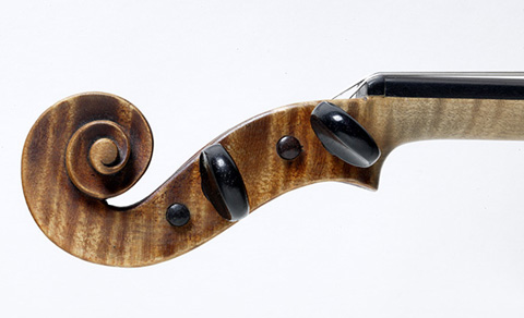 Left side view of a violin pegbox.