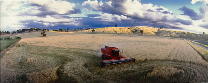 A red combine harvester at work in a field. Rolling hills and clouds form a backdrop.