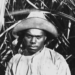 Young man or boy standing in front of tall stands of sugar cane. He is holding a piece of sugar cane. His face is expressionless.