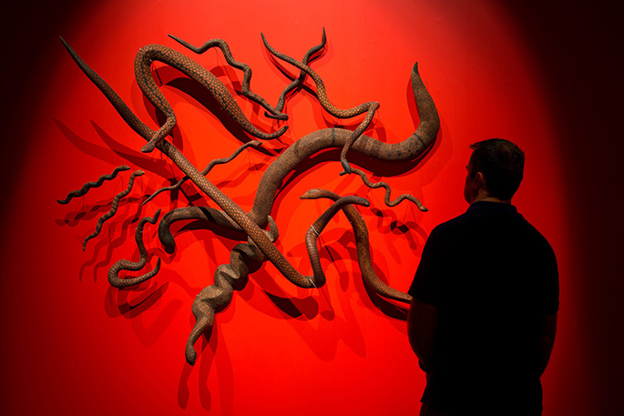 A person looking at the snake sculptures in the Songlines exhibition.
