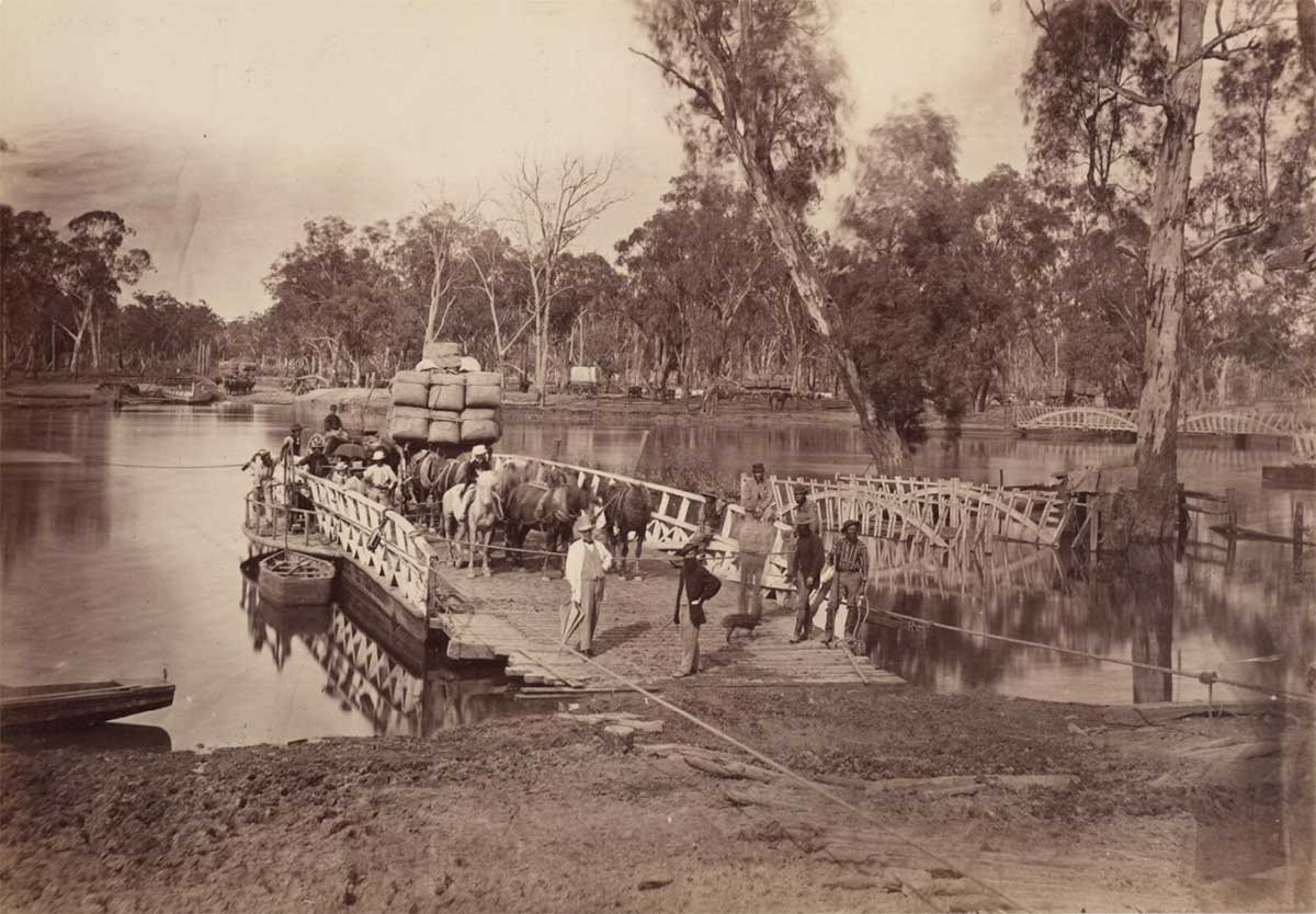 Black and white image showing a wooden vessel moored to a riverbank with ropes. Several horses and a wagon loaded with bales are at the rear of the punt. Various people are standing on the punt and there are many gum trees lining the river. - click to view larger image