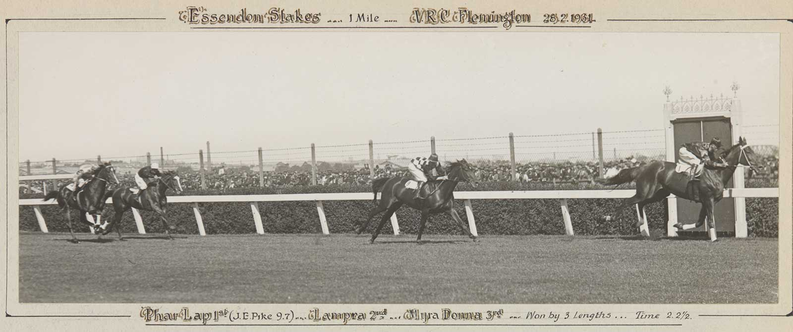 A black and white photo of Phar Lap winning the Essendon Stakes, 1931. - click to view larger image