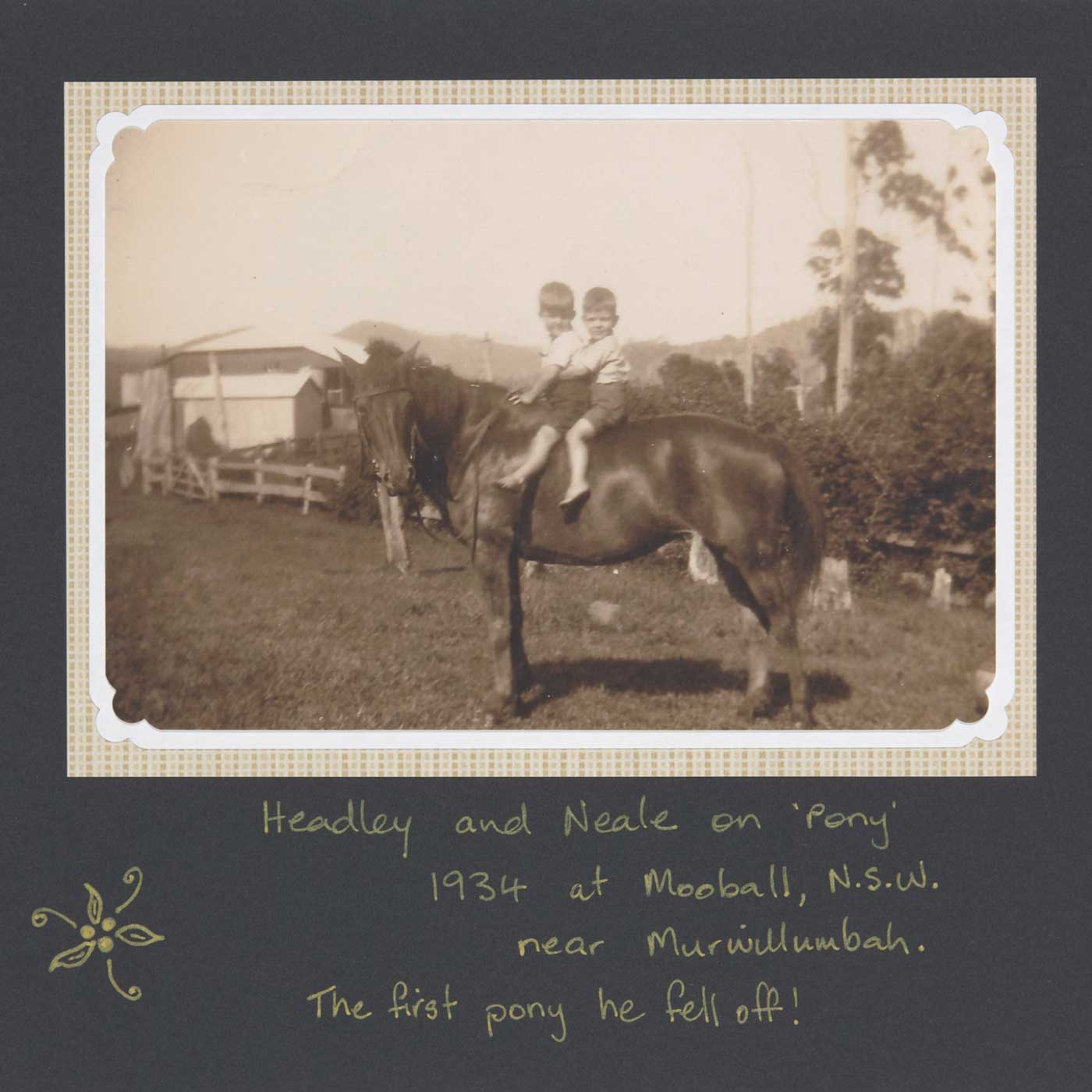 Headley and Neale (at back) double-dinking on Pony, at Mooball, near Murwillumbah, 1934 - click to view larger image