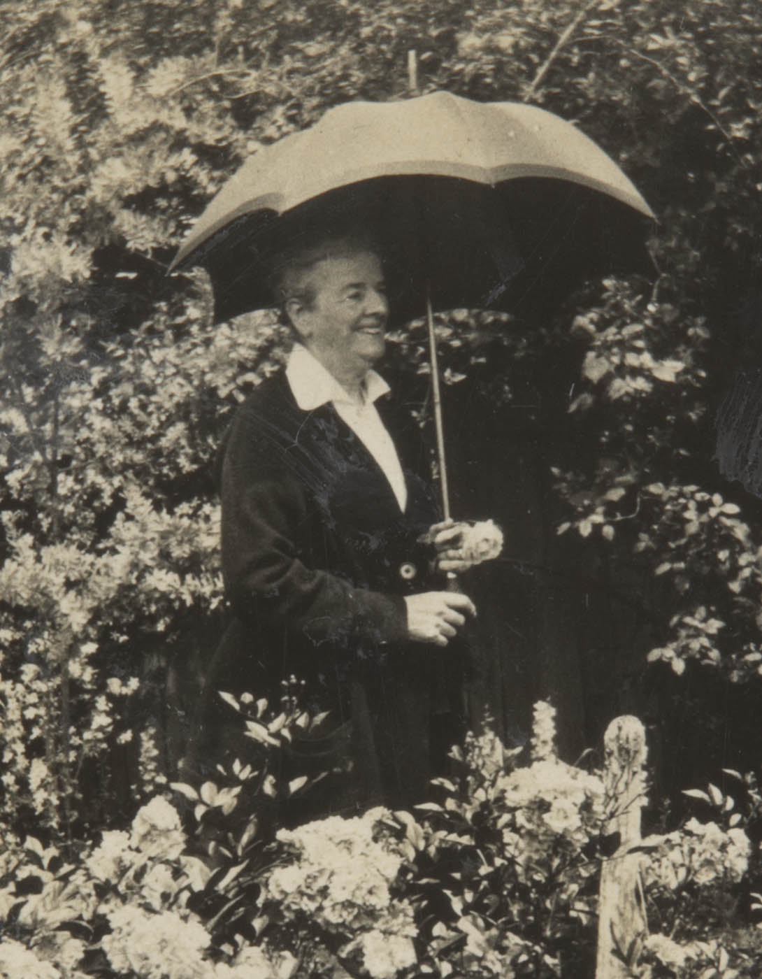 Portrait of an elderly woman under an umbrella in her garden. - click to view larger image