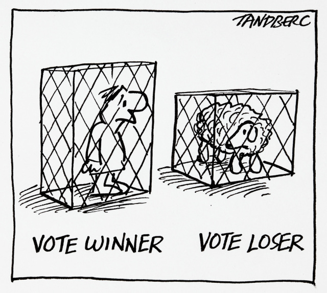 A cartoon of a human and a sheep, each in a small cage. Under the human is written, 'Vote winner'. Under the sheep 'Vote loser'. - click to view larger image