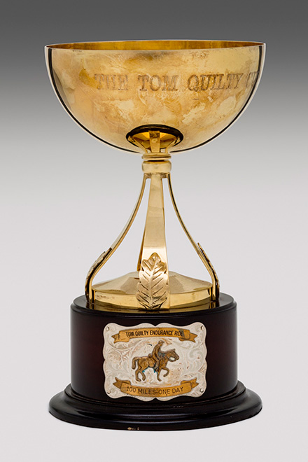 A gold cup atop a dark timber base. The cup is inscribed 'The Tom Quilty Cup'. - click to view larger image