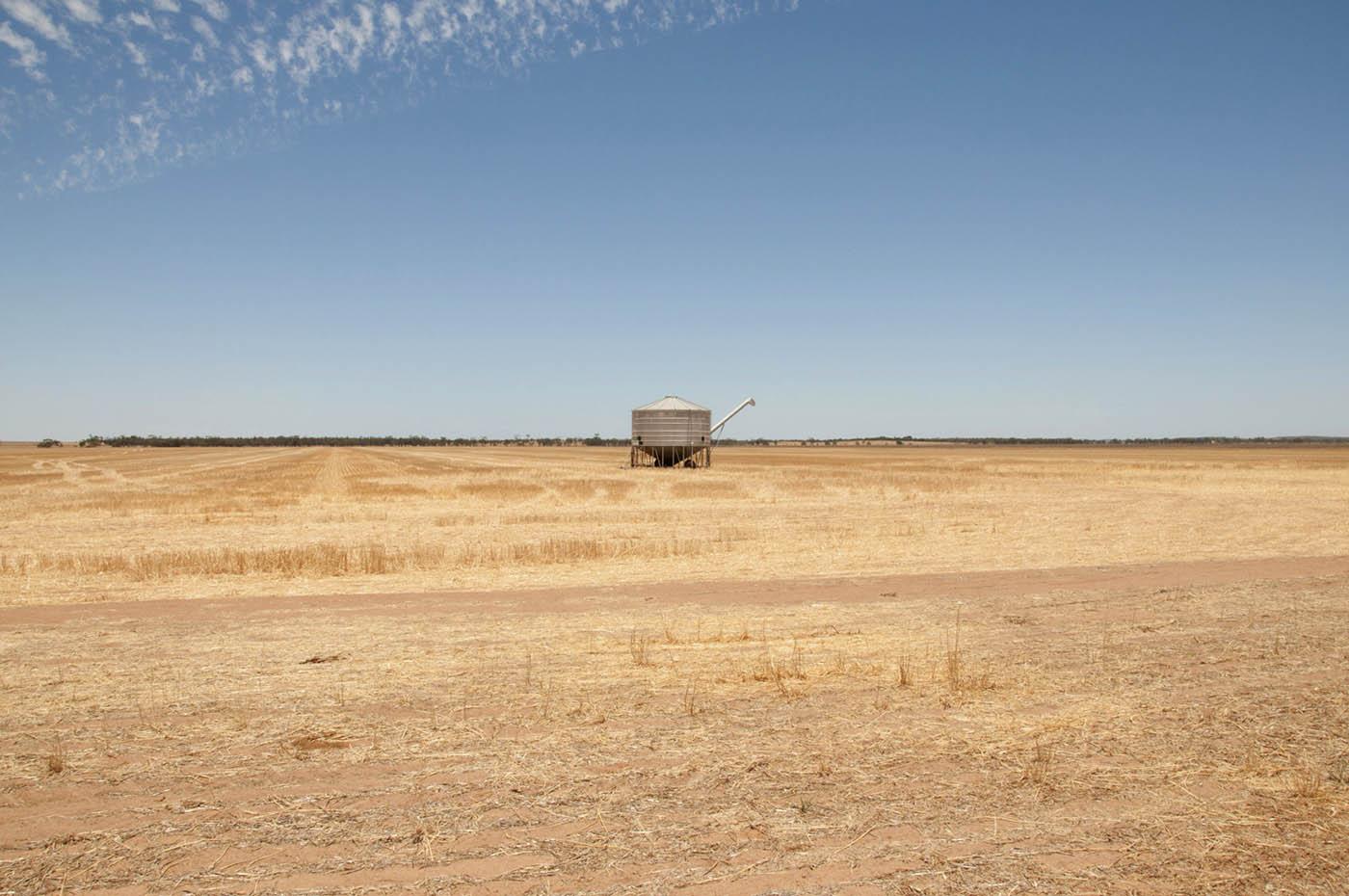 Farming country near Carnamah.