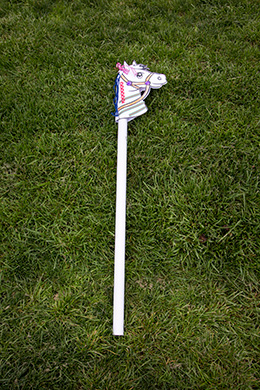 A hobbyhorse on some grass.