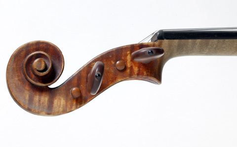 Left hand side view of a violin pegbox.
