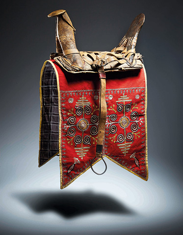 Saddle and saddlecloth with harness straps