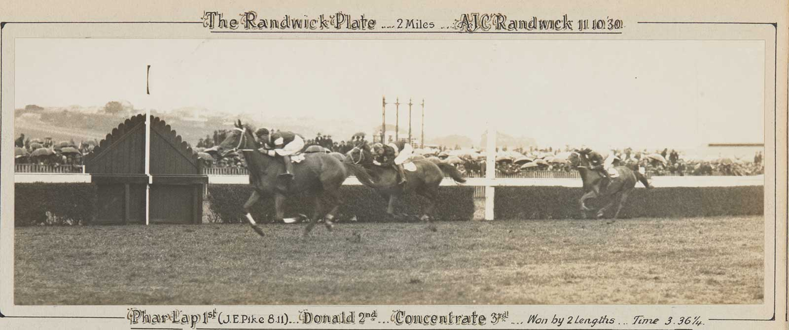 A black and white photo of Phar Lap winning the Randwick Plate, 1930. - click to view larger image