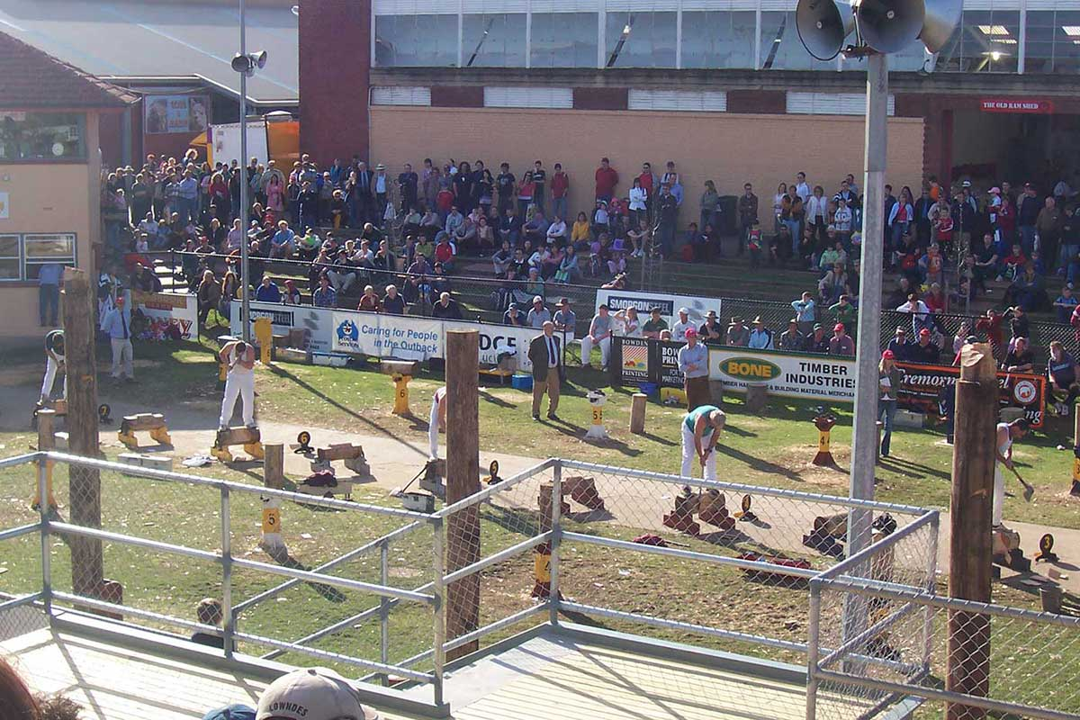 Colour photograph, taken from a grandstand, showing five men in a woodchopping competition. - click to view larger image