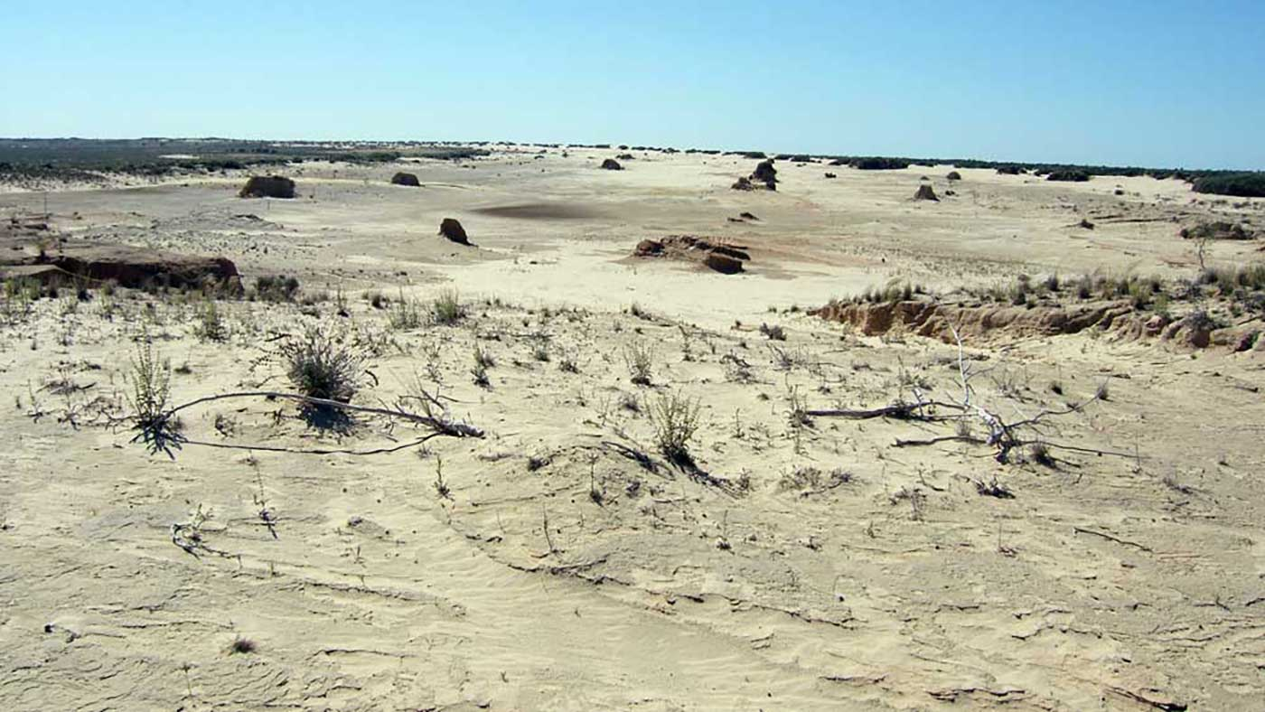 Desert scene with white-grey sandy soil extending to the horizon and sparse, low vegetation in the foreground. - click to view larger image