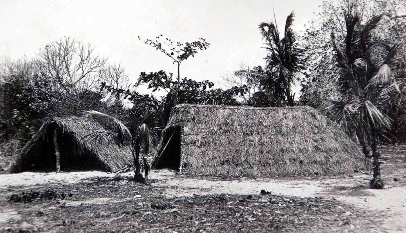 A black and white historic photo of two low level thatched huts. The garden is bare with a few palm or coconut trees. There are other less lively trees in the background.