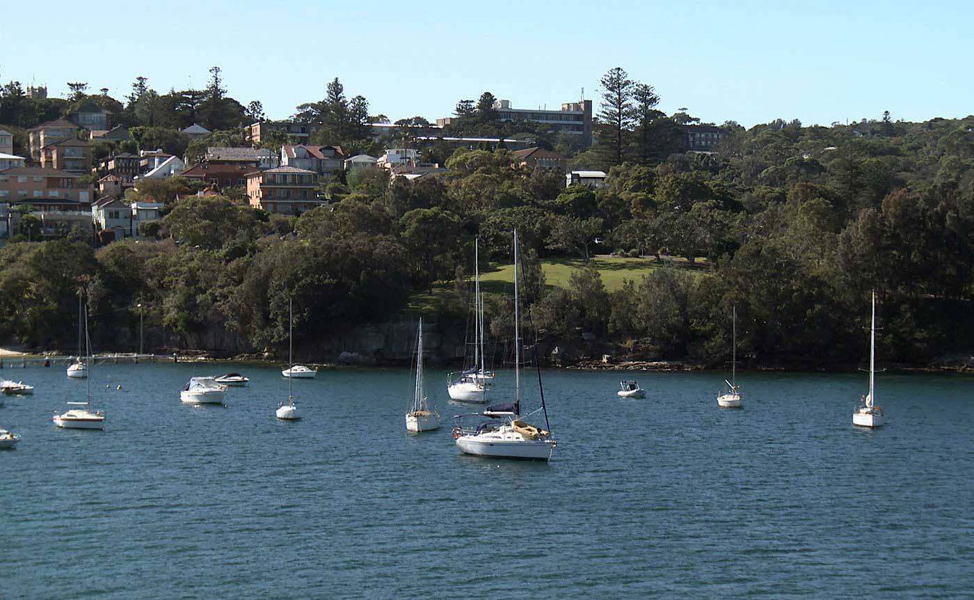 A photo of a collection of houses and other buildings and trees overlooking an inlet of water and thirteen small white boats with tall mast.