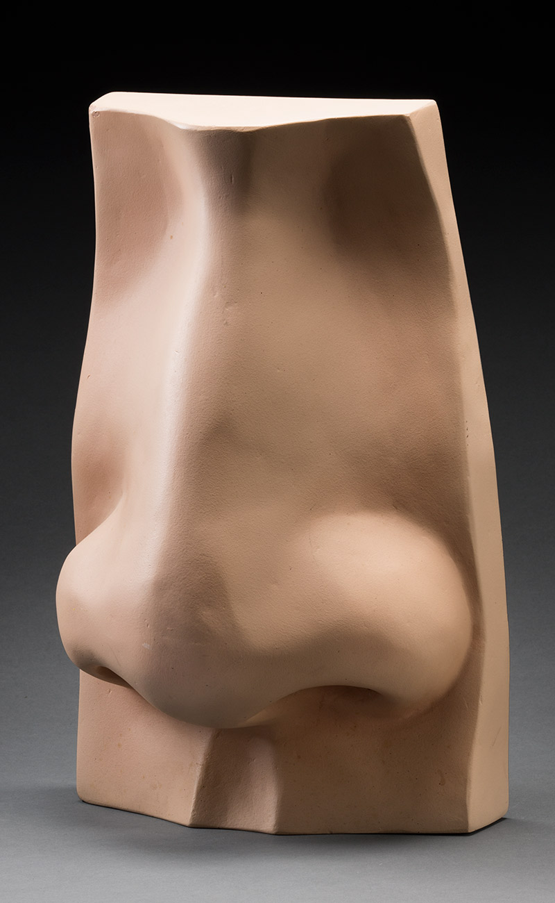 Mounted three-dimensional model of a nose.