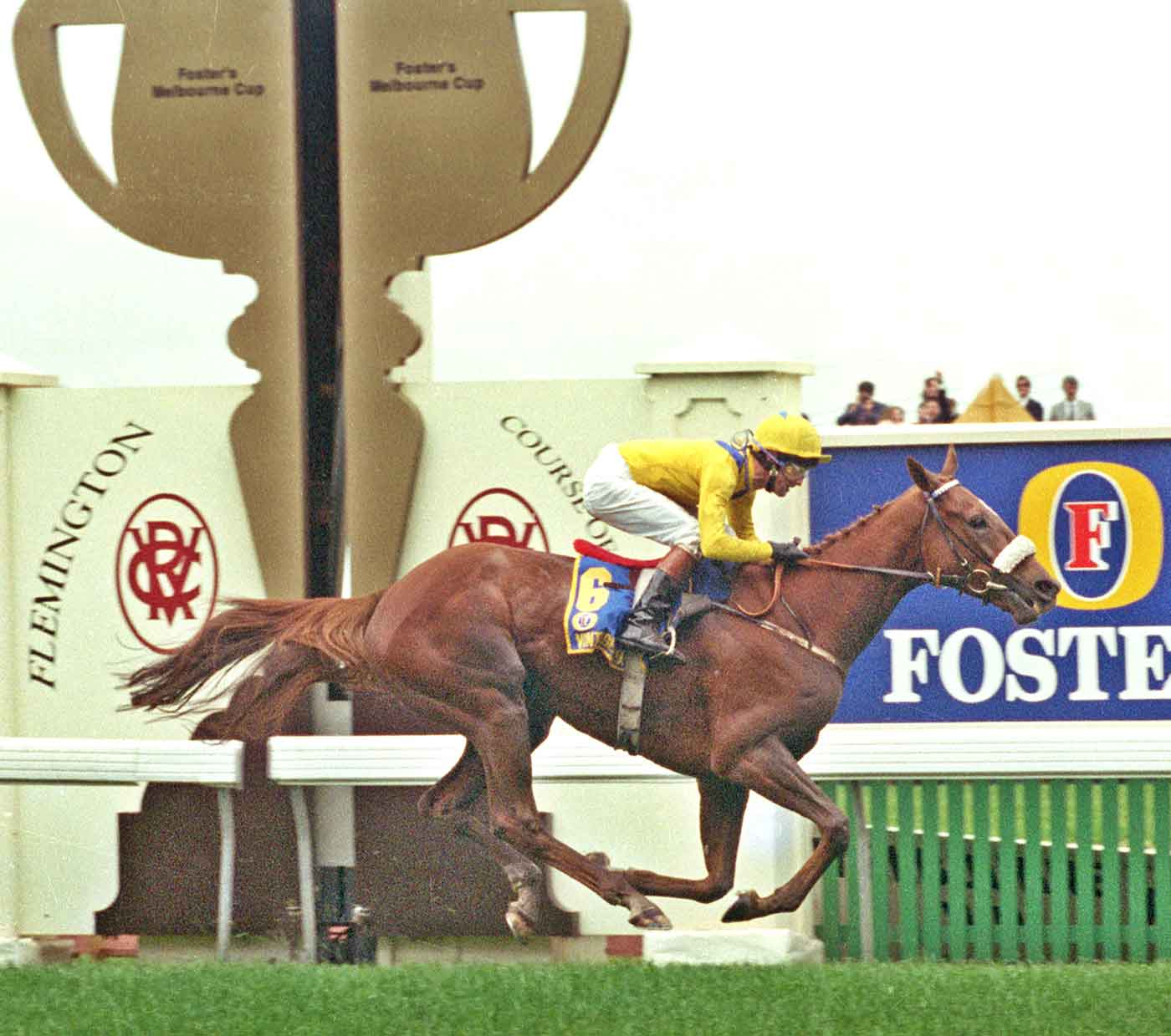 Jockey and race horse on a race course with spectators in background.