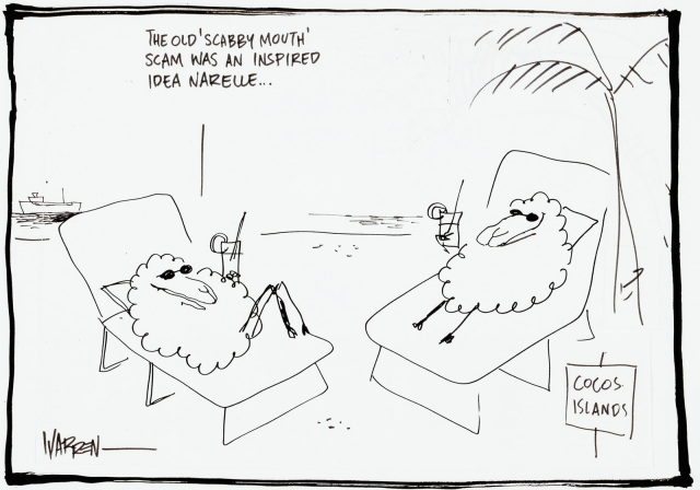A cartoon featuring two sheep drinking cocktails, lying in deckchairs on a sunny beach. One say to the other 'The old