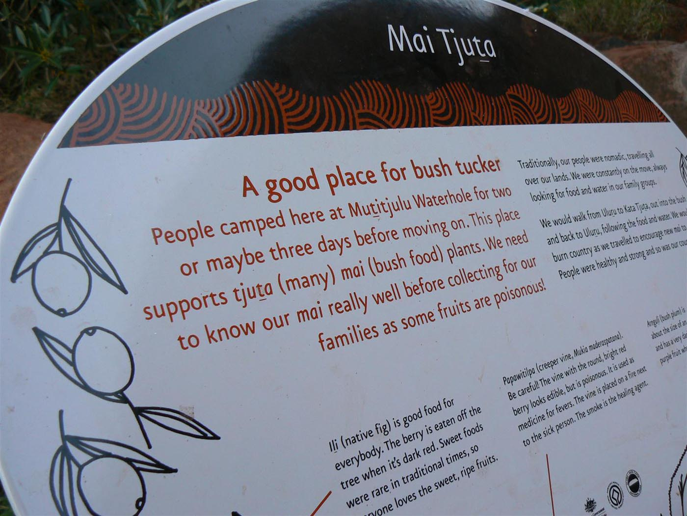 Signboard on bush tucker for tourists with the text 'Mai Tjuta'. - click to view larger image