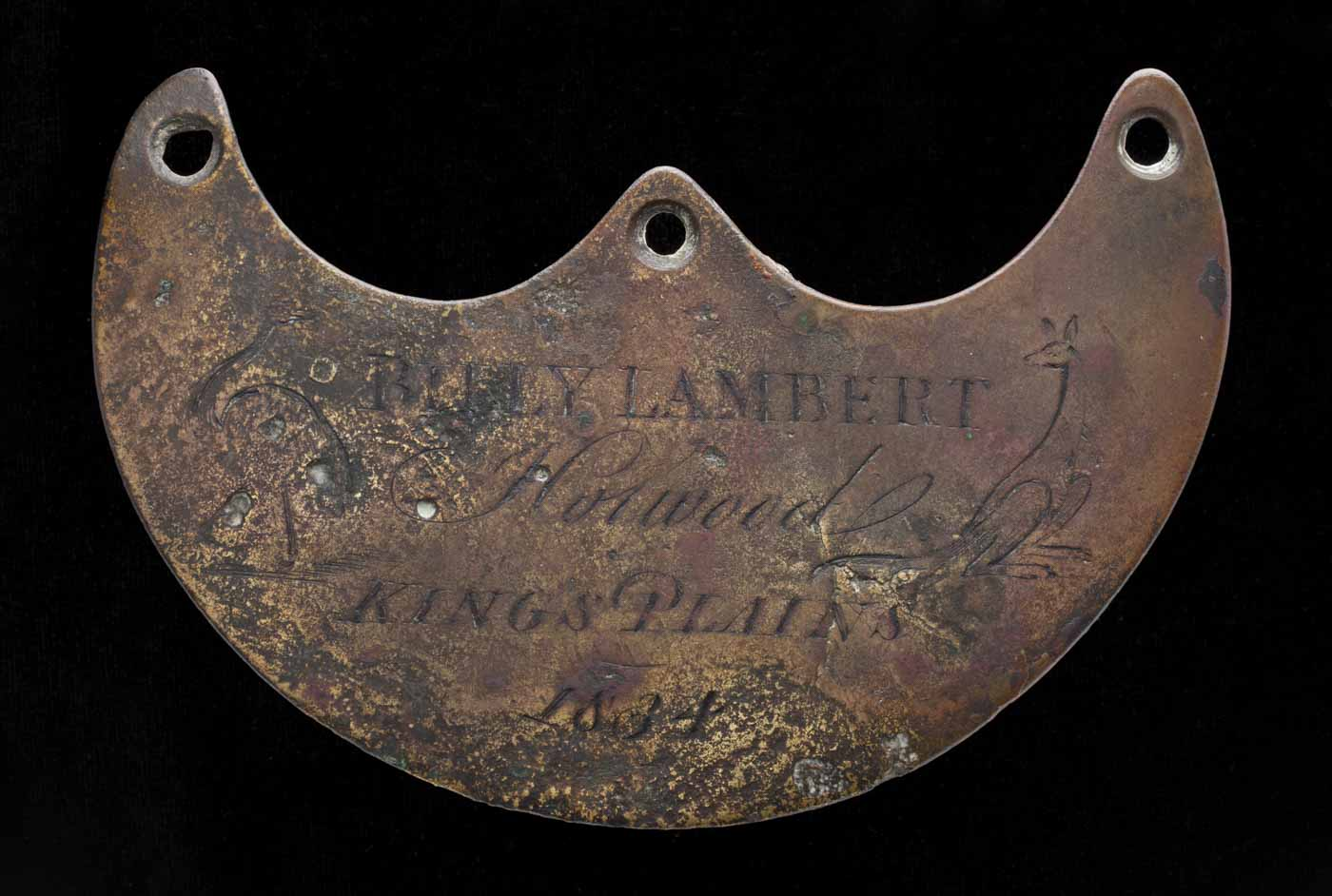 Engraved breastplate with a rusted, pitted surface. Includes images of a kangaroo and emu and text '1834'. - click to view larger image