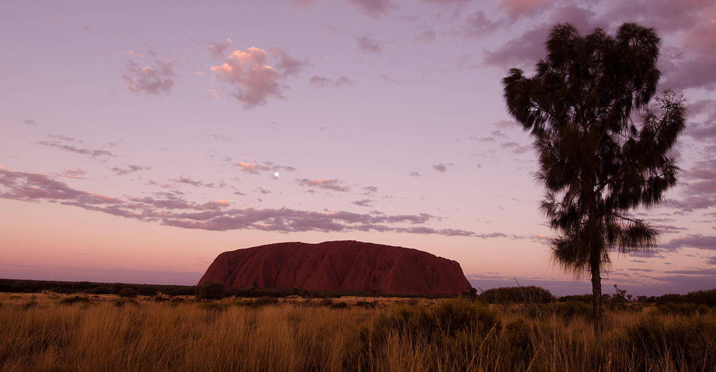Landscape image showing a large, purple-red monolith rising above grasses. - click to view larger image