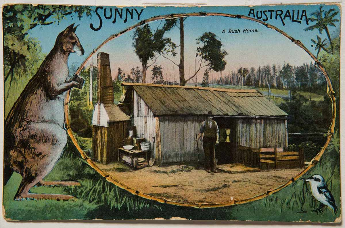 Colour postcard showing an Australian bush scene, with 'A Bush Home' illustration inset. The inset shows a male settler standing in front of a slab hut. A kangaroo stands to the left of the inset and a kookaburra is in the bottom right corner of the card. - click to view larger image