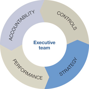 Doughnut chart divied into four equal sections labelled: 'Accountability', 'Controls', 'Strategy', 'Performance'. The centre of the doughnut is labelled 'Executive team'.